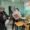Избирательная комиссия Коми обнародовала предварительные итоги голосования по выборам в Госдуму